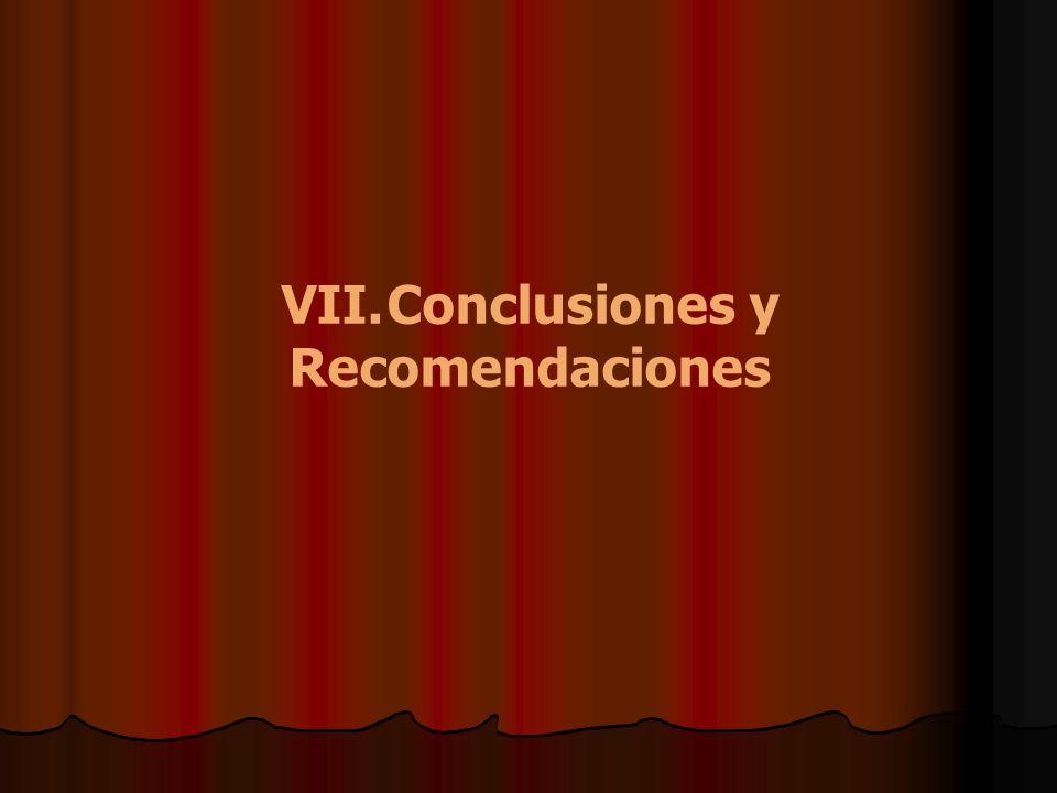 VII. Conclusiones y Recomendaciones