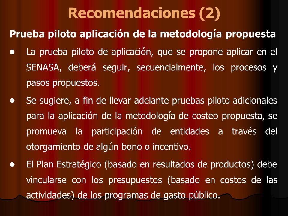 Recomendaciones (2) Prueba piloto aplicación de la metodología propuesta.