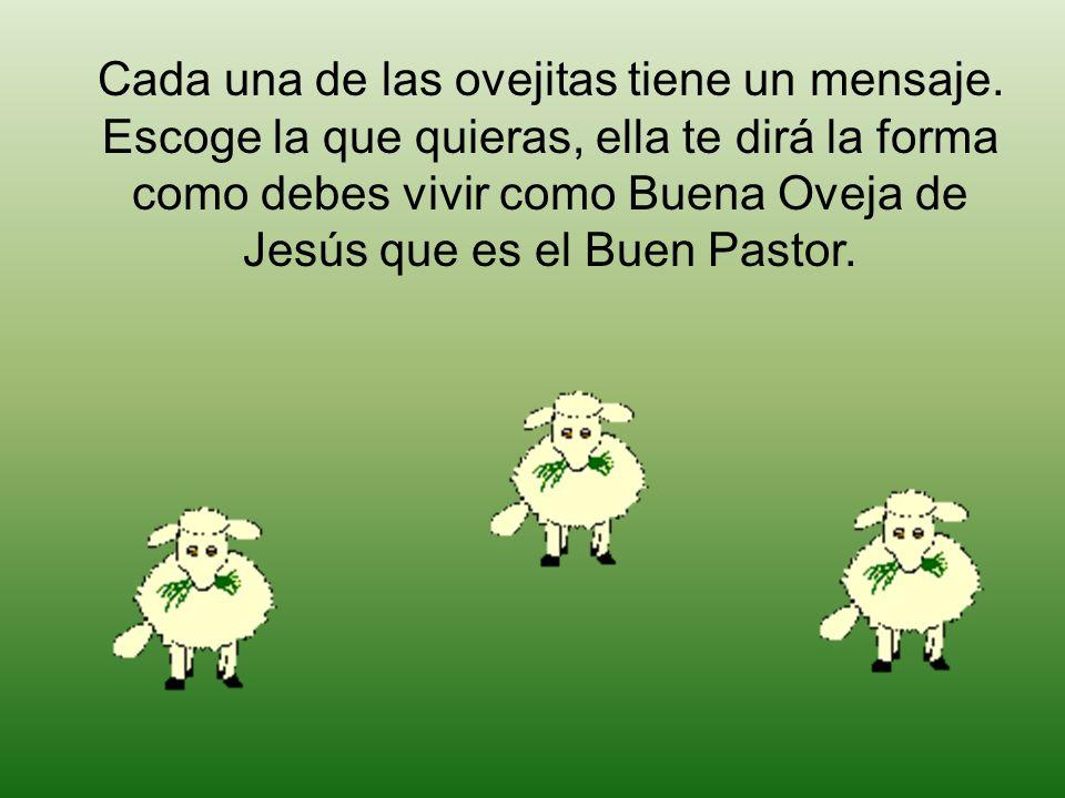 Cada una de las ovejitas tiene un mensaje