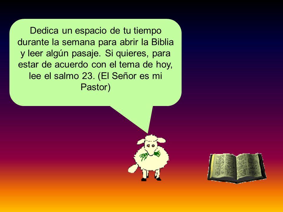 Dedica un espacio de tu tiempo durante la semana para abrir la Biblia y leer algún pasaje.