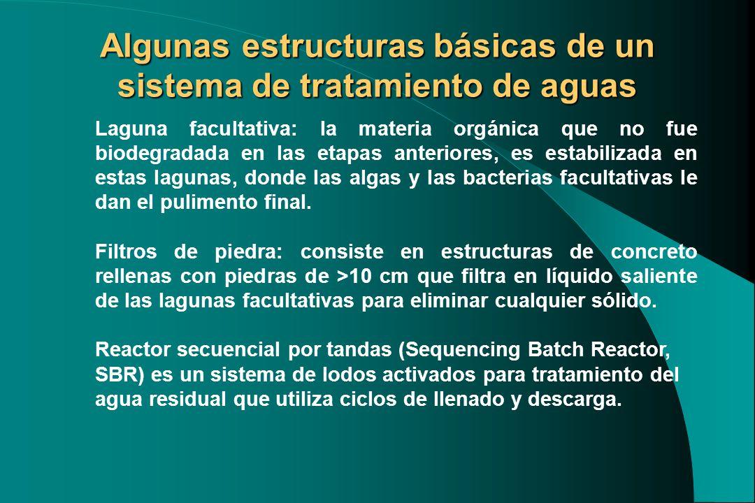 Algunas estructuras básicas de un sistema de tratamiento de aguas