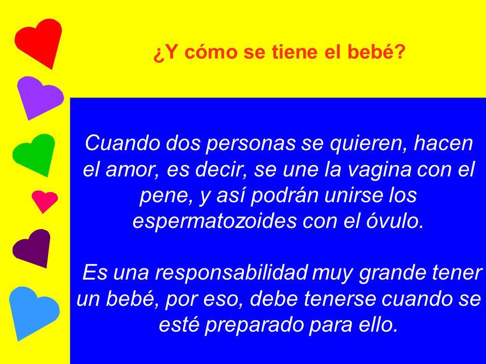 Tamaño Promedio Del Pene Y La Vagina - Humor -
