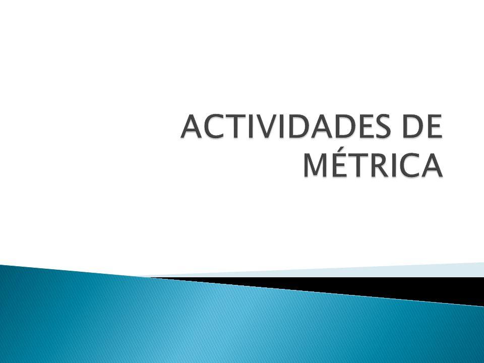 ACTIVIDADES DE MÉTRICA