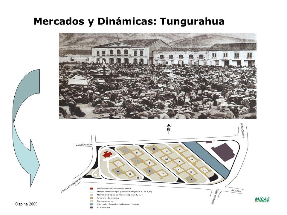 Mercados y Dinámicas: Tungurahua