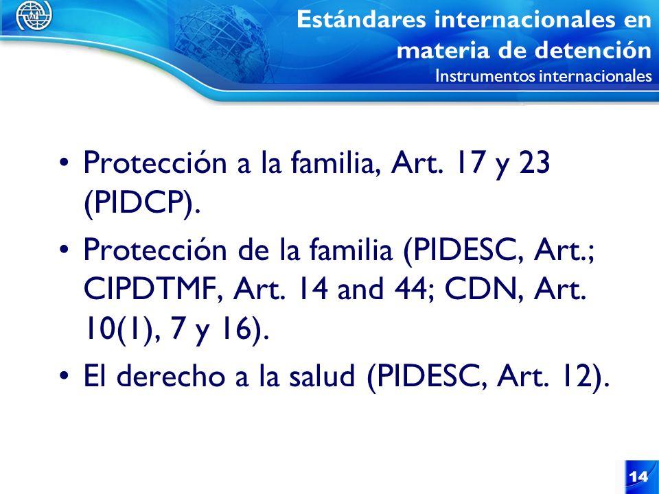 Protección a la familia, Art. 17 y 23 (PIDCP).