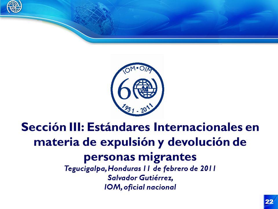 Sección III: Estándares Internacionales en materia de expulsión y devolución de personas migrantes