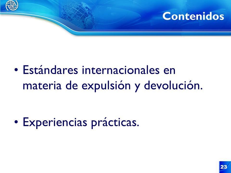 Estándares internacionales en materia de expulsión y devolución.