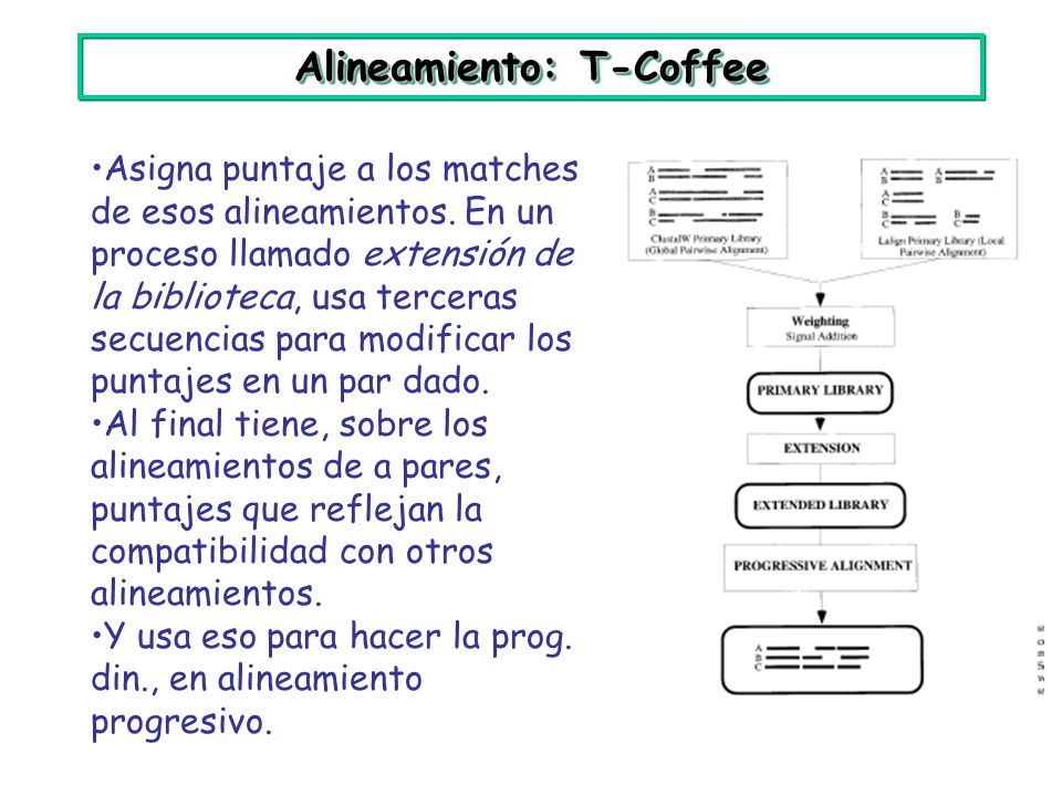 Alineamiento: T-Coffee