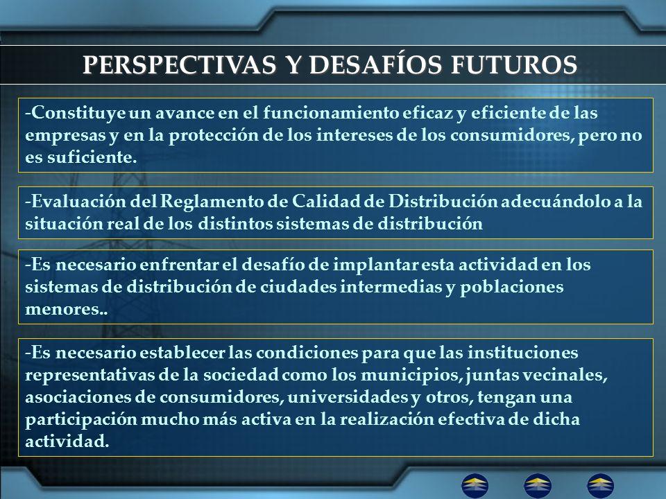 PERSPECTIVAS Y DESAFÍOS FUTUROS
