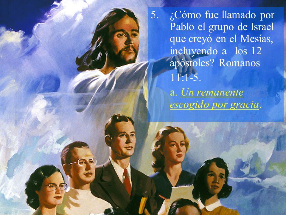 ¿Cómo fue llamado por Pablo el grupo de Israel que creyó en el Mesías, incluyendo a los 12 apóstoles Romanos