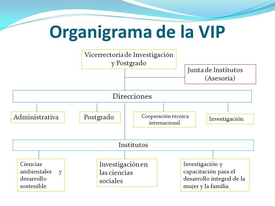 Organigrama de la VIP Direcciones