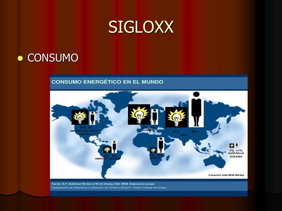SIGLOXX CONSUMO