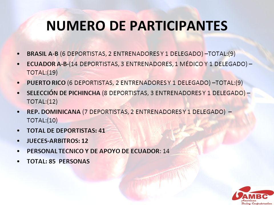 NUMERO DE PARTICIPANTES