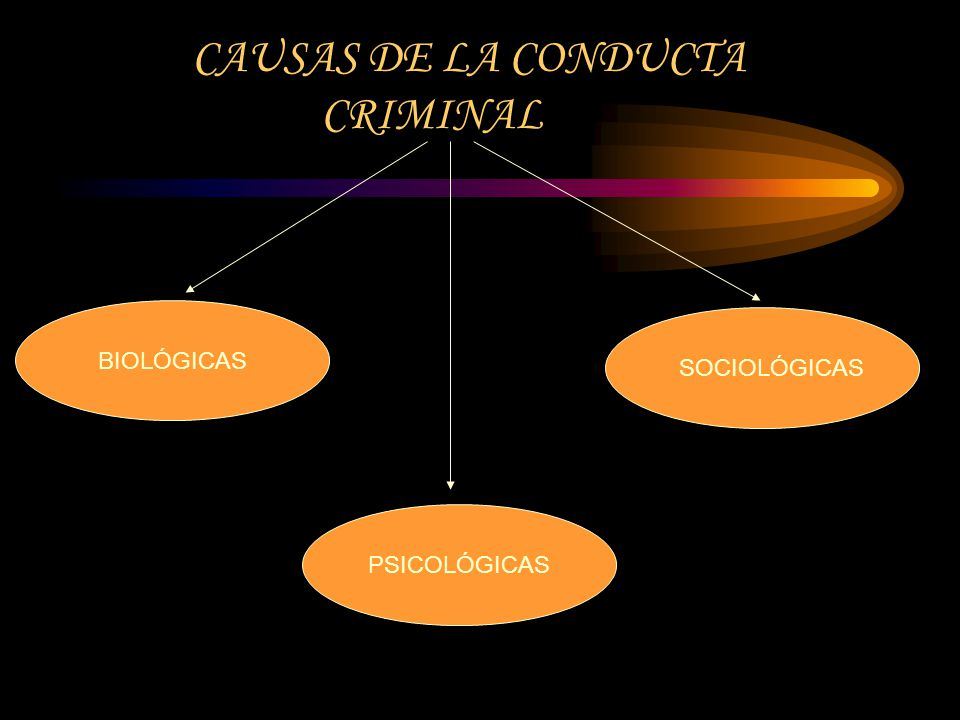 CAUSAS DE LA CONDUCTA CRIMINAL