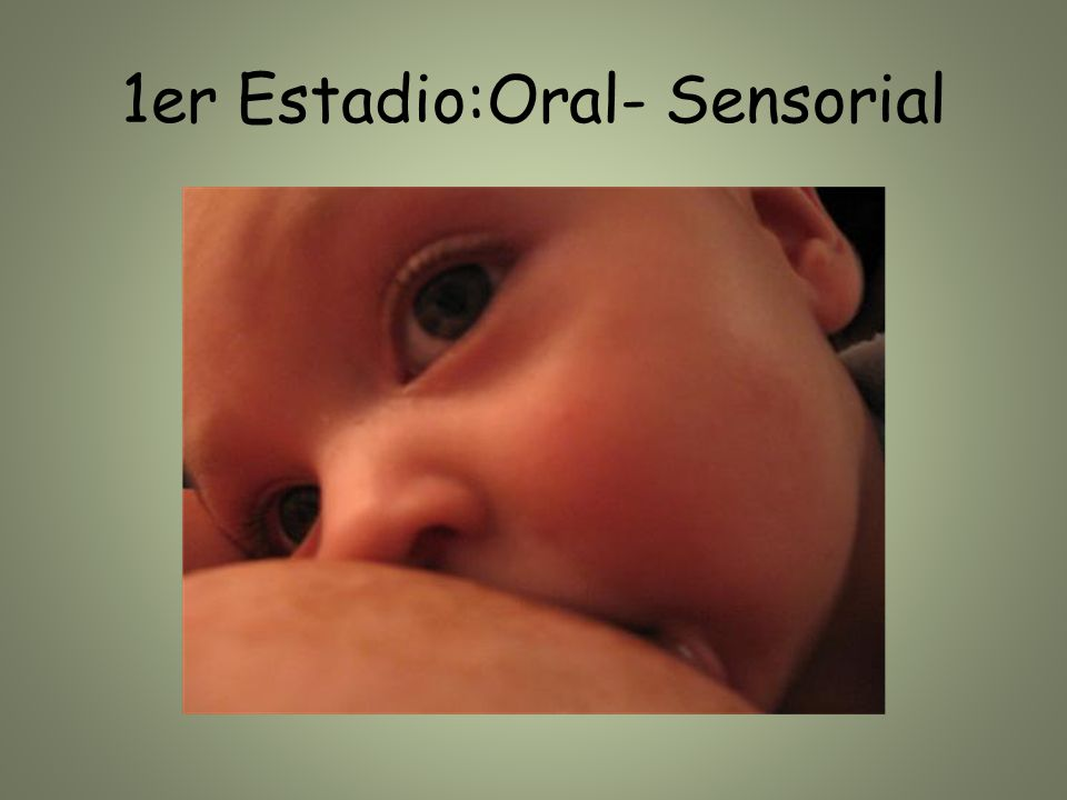 1er Estadio:Oral- Sensorial