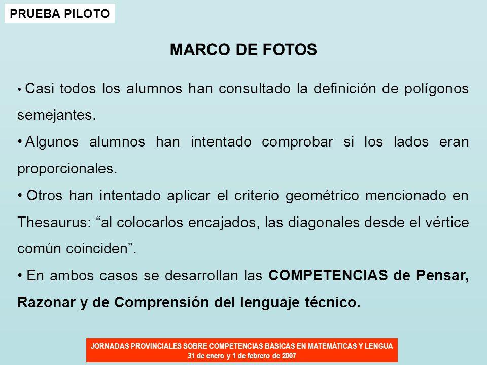 PRUEBA PILOTO MARCO DE FOTOS. Casi todos los alumnos han consultado la definición de polígonos semejantes.