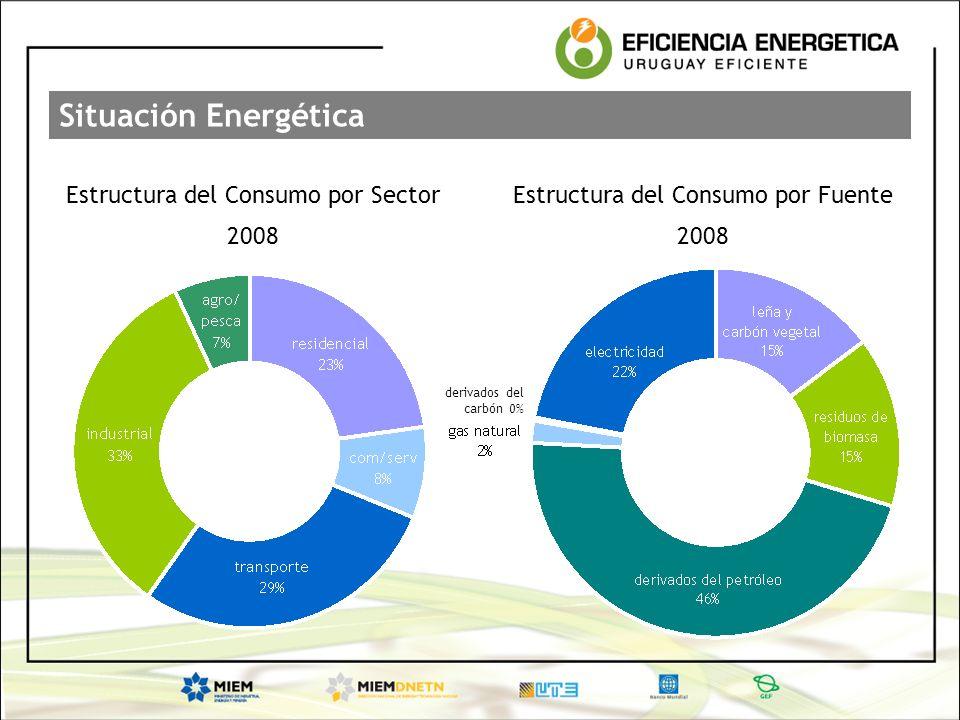 Situación Energética Estructura del Consumo por Sector 2008