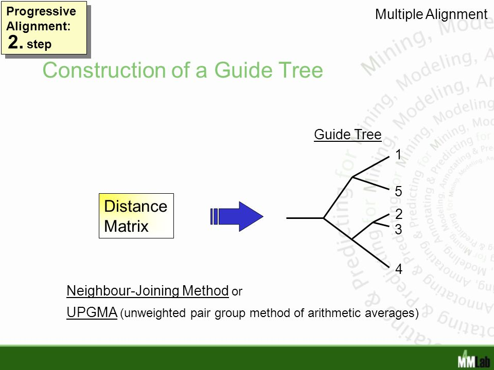 Construction of a Guide Tree