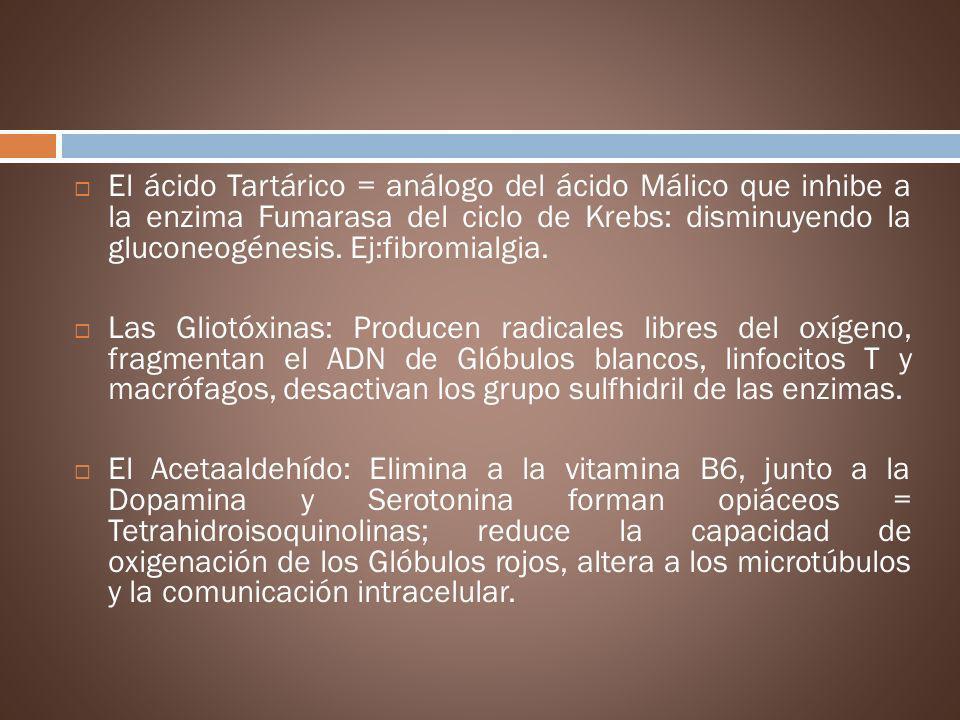El ácido Tartárico = análogo del ácido Málico que inhibe a la enzima Fumarasa del ciclo de Krebs: disminuyendo la gluconeogénesis. Ej:fibromialgia.
