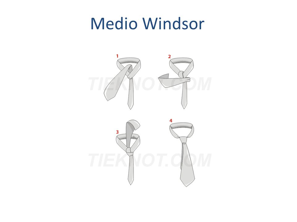 Medio Windsor
