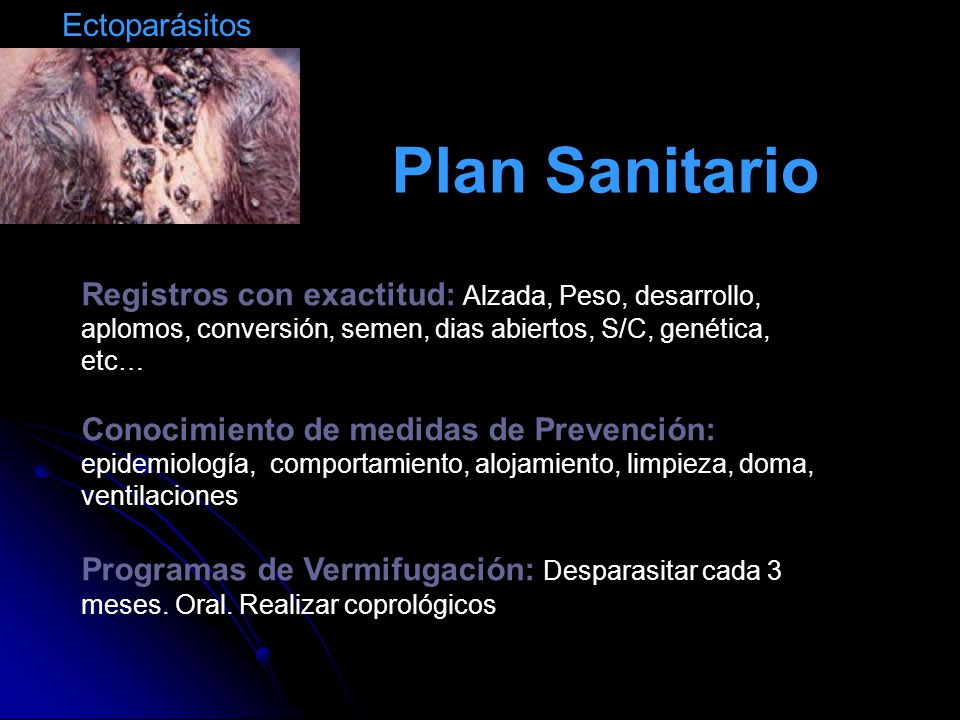 Plan Sanitario Ectoparásitos