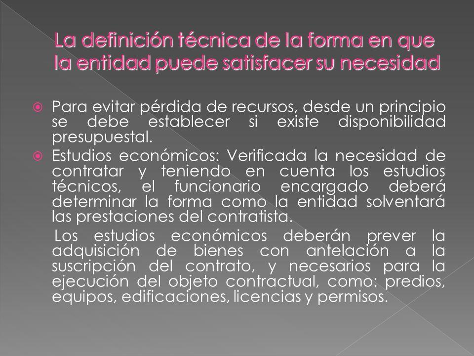 La definición técnica de la forma en que la entidad puede satisfacer su necesidad
