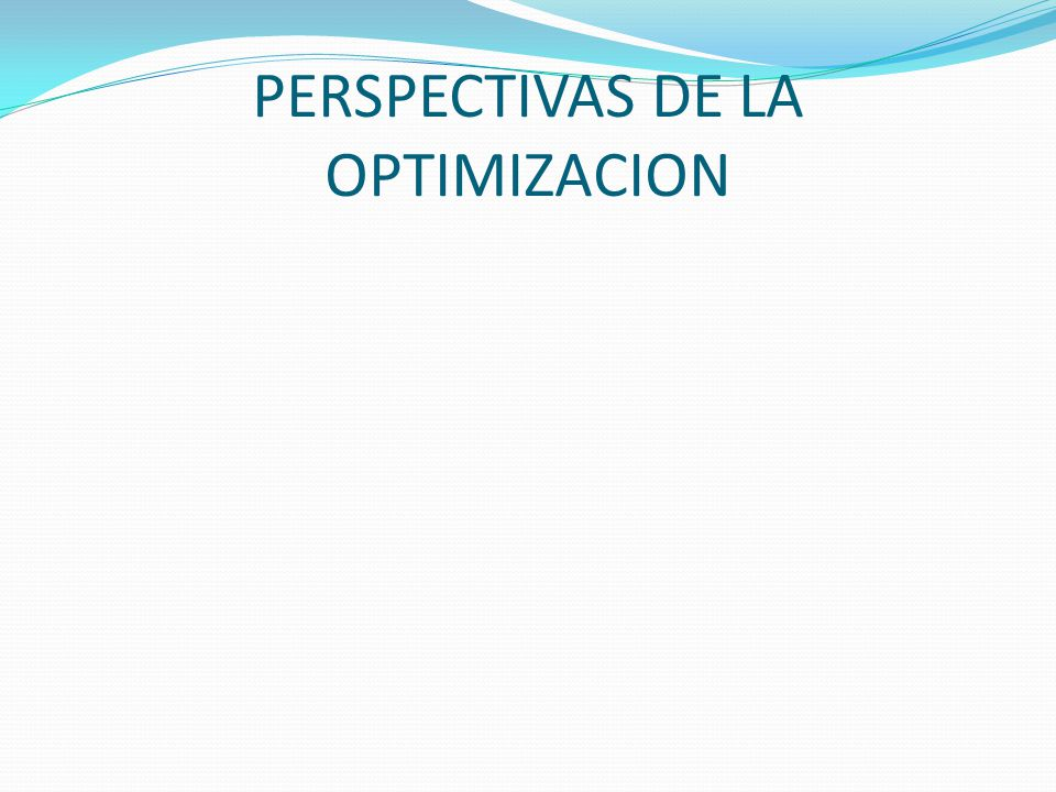 PERSPECTIVAS DE LA OPTIMIZACION