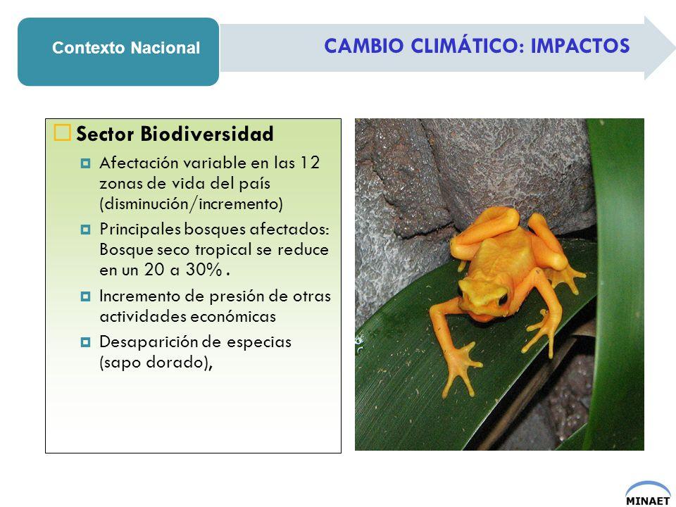 Sector Biodiversidad CAMBIO CLIMÁTICO: IMPACTOS