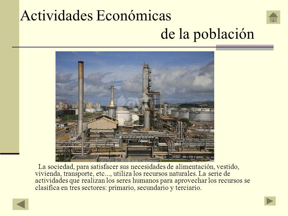 Actividades Económicas de la población