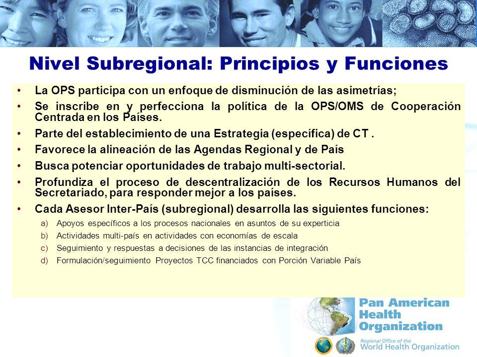 Nivel Subregional: Principios y Funciones