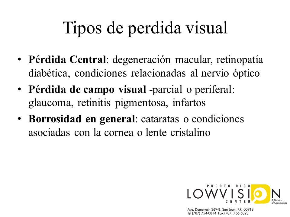 Tipos de perdida visual