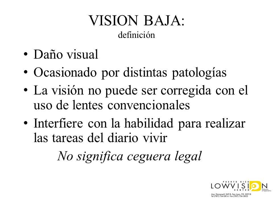VISION BAJA: definición