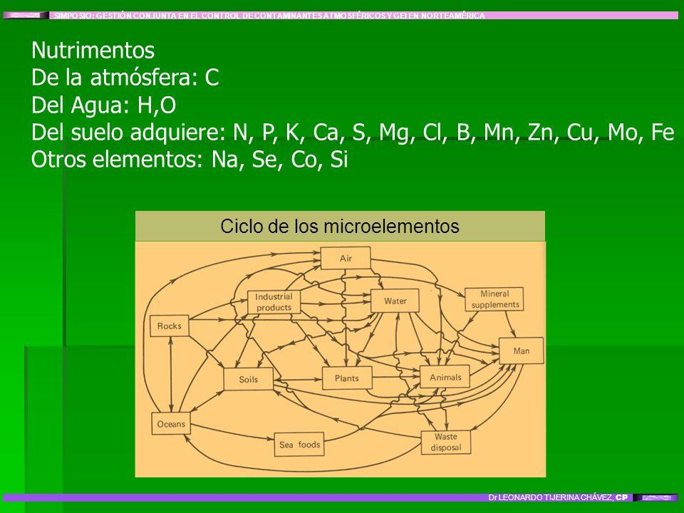 Ciclo de los microelementos