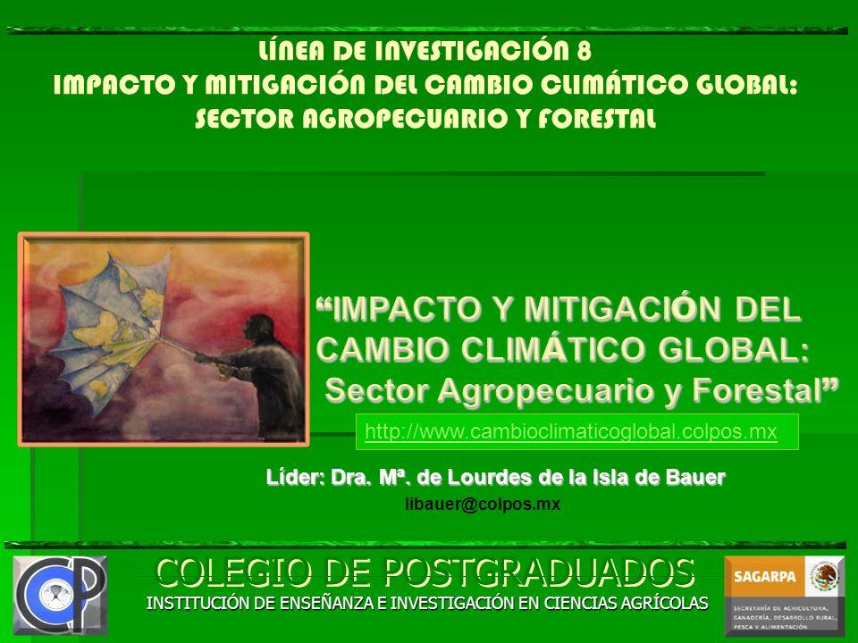 Líder: Dra. Mª. de Lourdes de la Isla de Bauer
