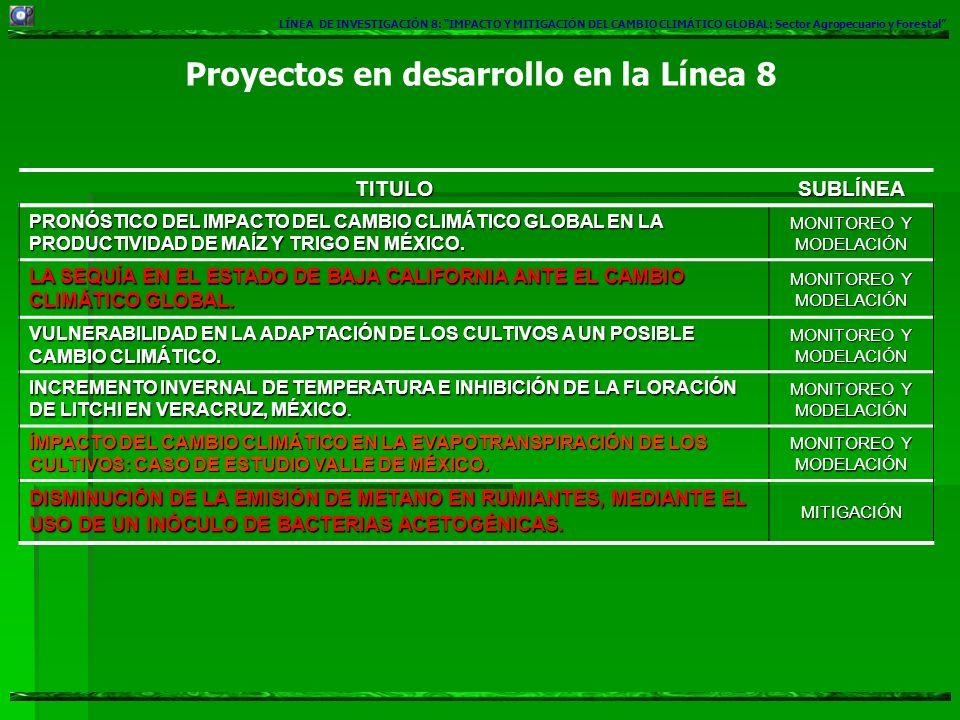 Proyectos en desarrollo en la Línea 8