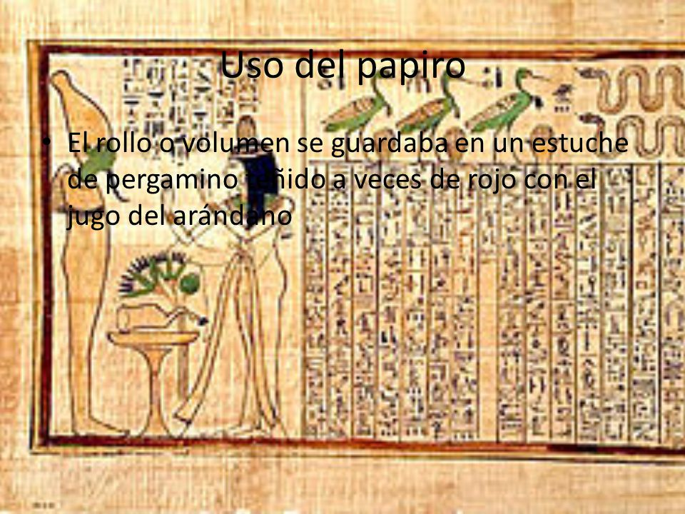 Uso del papiro El rollo o volumen se guardaba en un estuche de pergamino teñido a veces de rojo con el jugo del arándano.