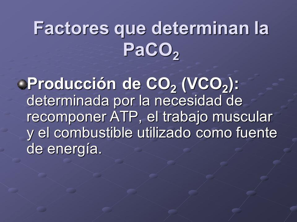 Factores que determinan la PaCO2
