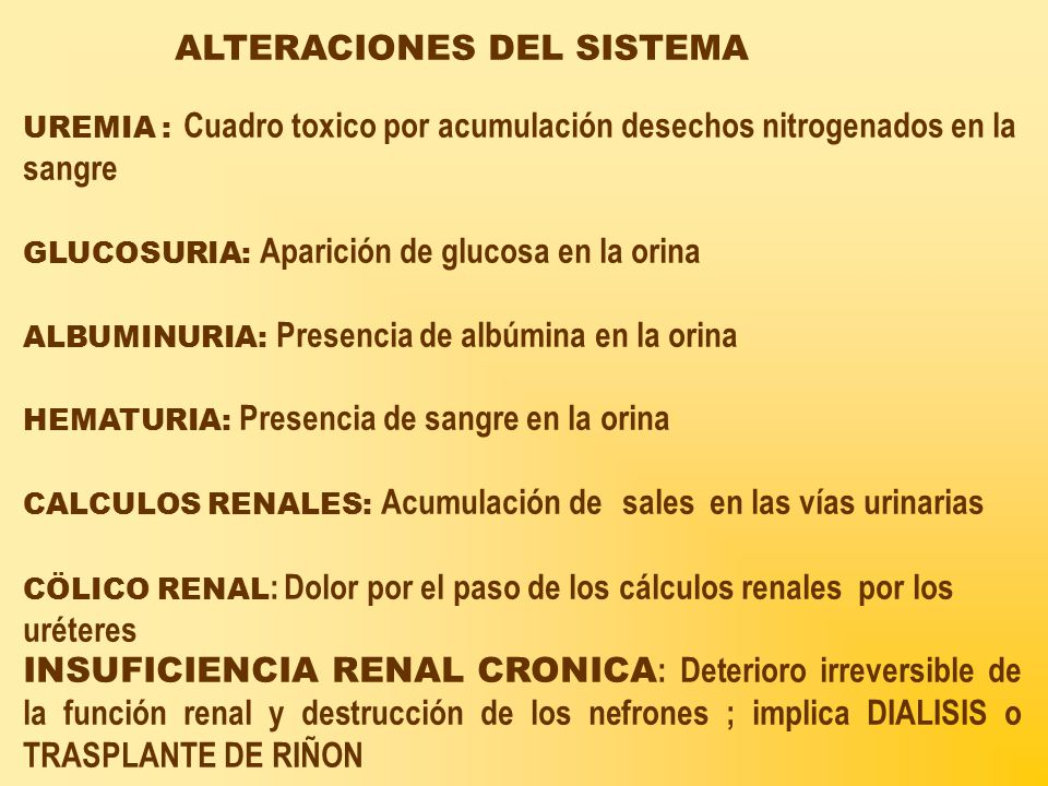 ALTERACIONES DEL SISTEMA