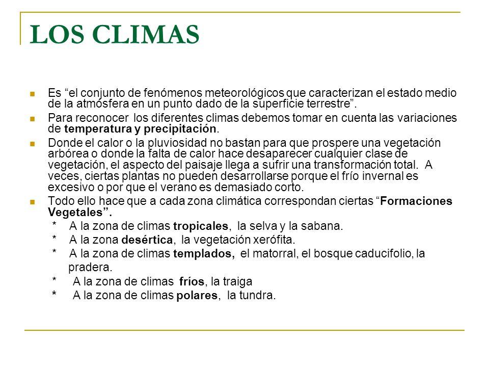Atm sfera y clima atm sfera terrestre tiempo y clima ppt for El tiempo en macanet de la selva