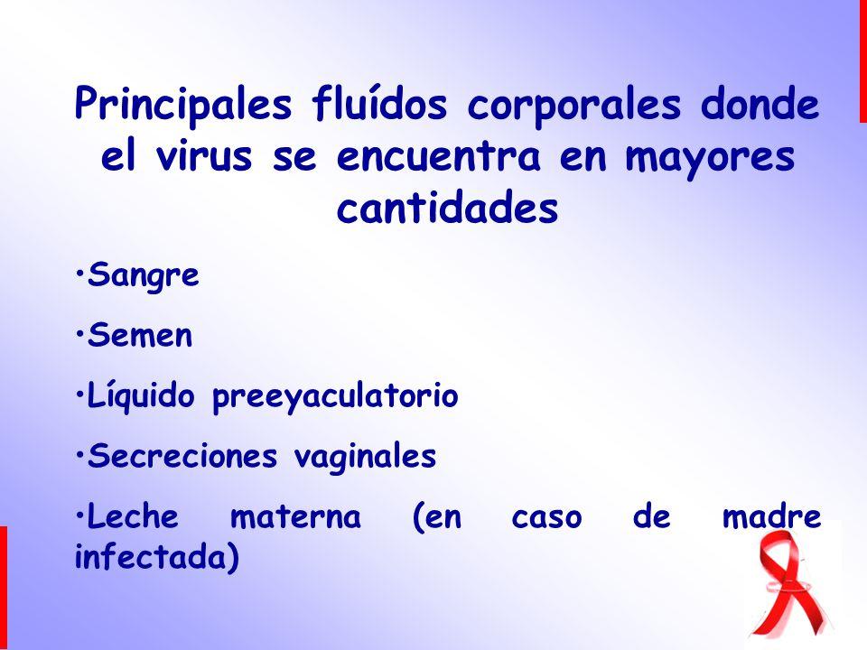 Principales fluídos corporales donde el virus se encuentra en mayores cantidades