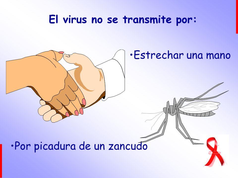 El virus no se transmite por: