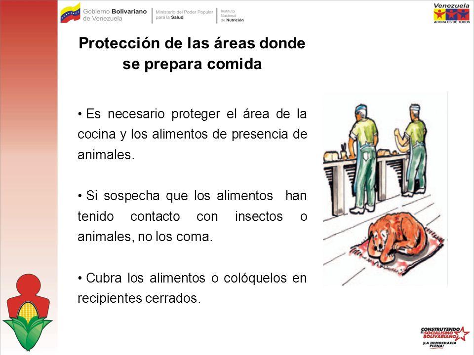 Protección de las áreas donde se prepara comida