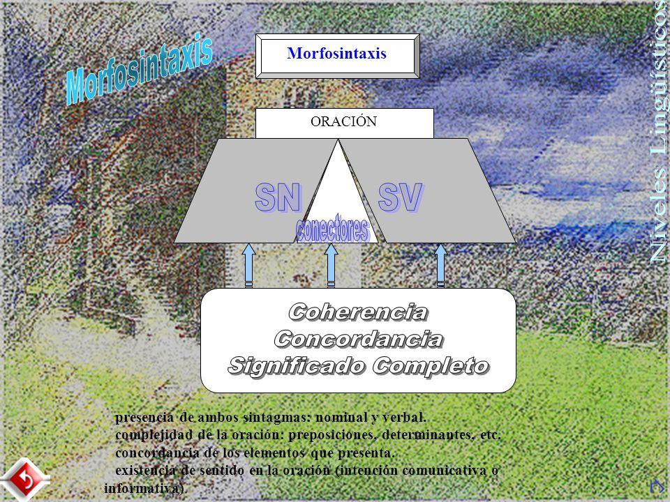 Morfosintaxis SN SV conectores Coherencia Concordancia