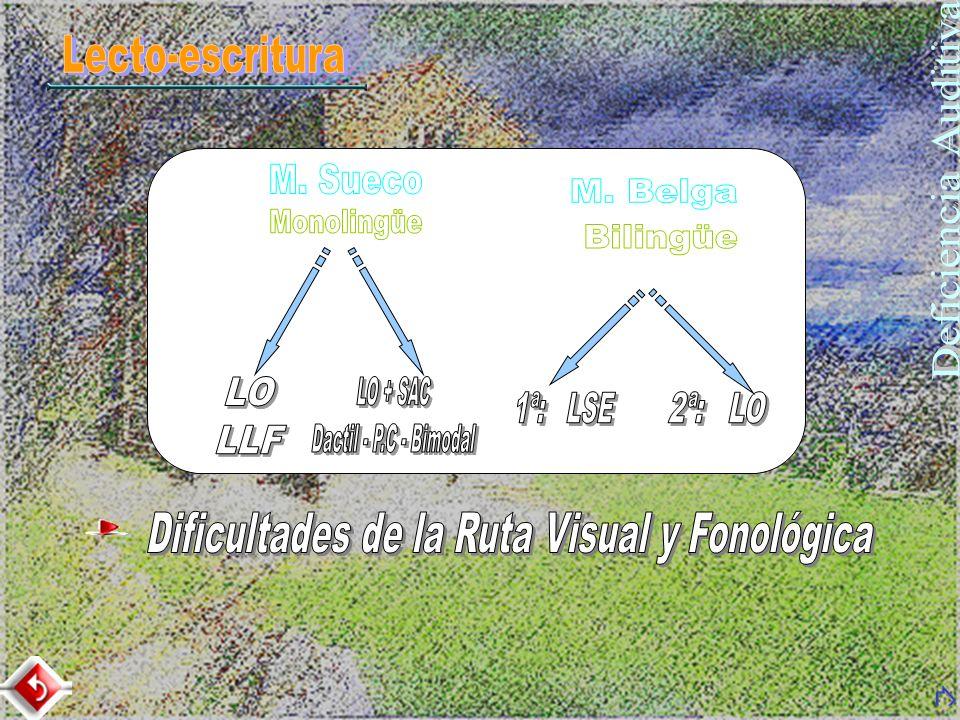 Dificultades de la Ruta Visual y Fonológica