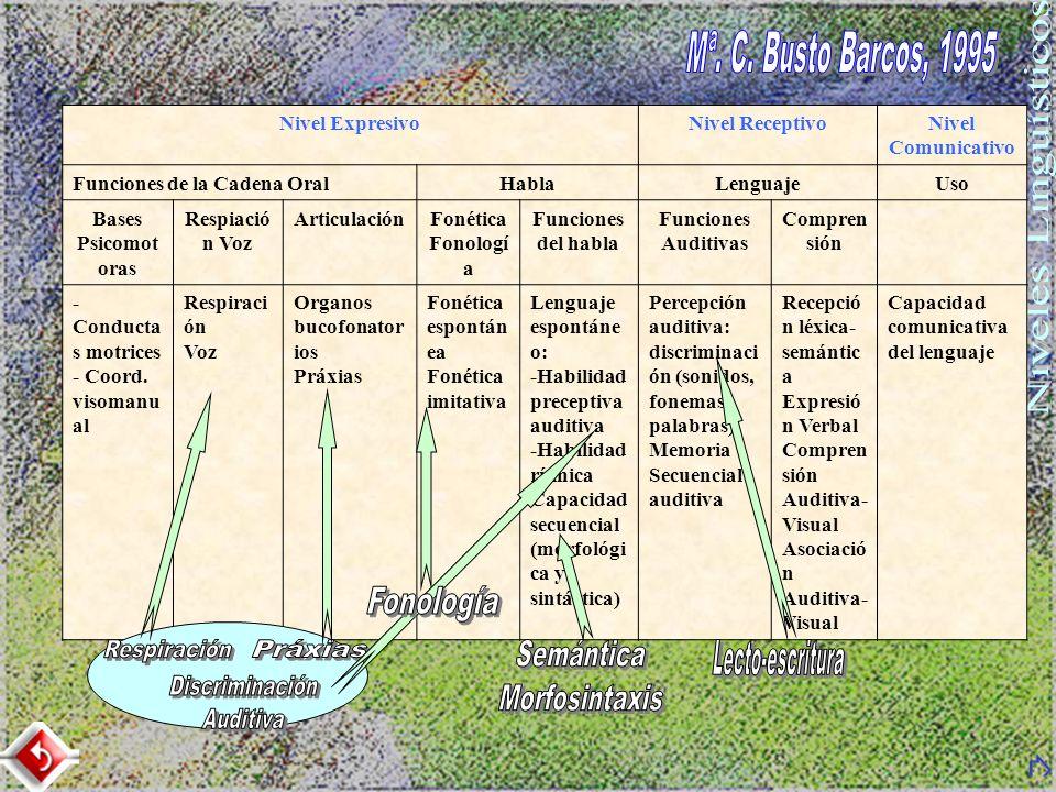 Mª. C. Busto Barcos, 1995 Niveles Lingüísticos Respiración Práxias
