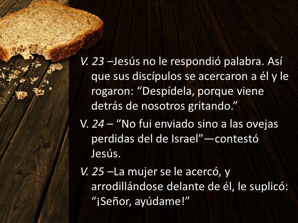 V. 23 –Jesús no le respondió palabra