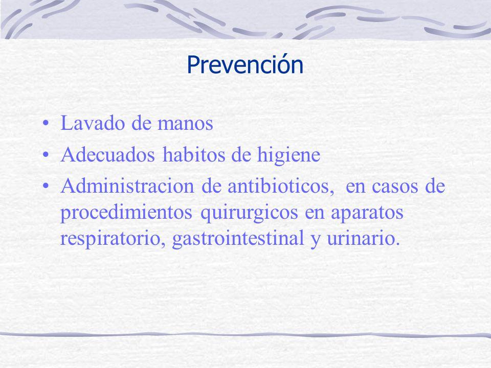 Prevención Lavado de manos Adecuados habitos de higiene