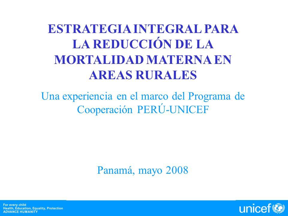 Una experiencia en el marco del Programa de Cooperación PERÚ-UNICEF