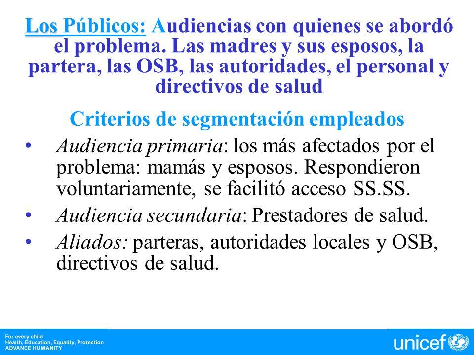 Criterios de segmentación empleados