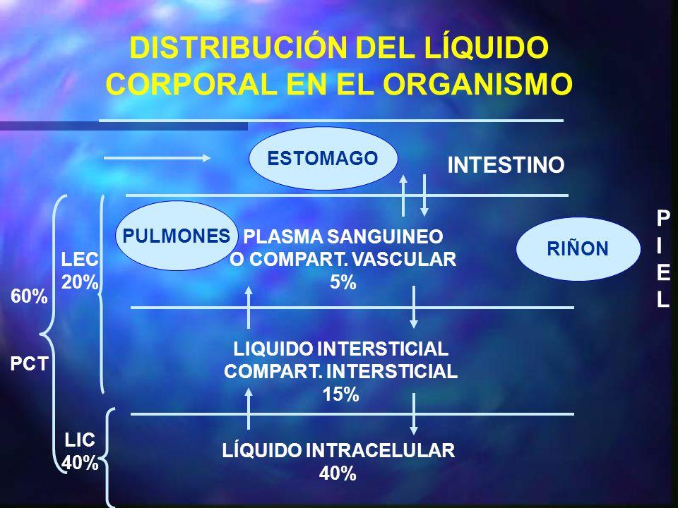 DISTRIBUCIÓN DEL LÍQUIDO CORPORAL EN EL ORGANISMO
